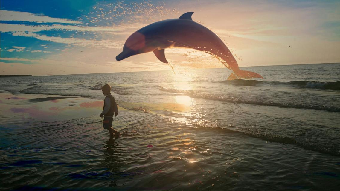 🐬🐟🏖🌞#sea  #picsartedit  #sunset  #poland  #polandfotography  #kołobrzeg  #zachódsłońca  #polskiemorze  #picsarteffects  #picsart  #dolphin  #delfin   #smartphonephotography  #sonyxperiaphotography  #FreeToEdit  #edited  #morze
