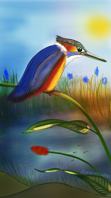 Martin pescador. kingfisher. (Original by me, no clipart, no stickers) #wdpprimarycolors #digitaldrawing #mydrawing #digitalart  #bird  8º place! Thank you so much for your likes, nice comments, reposts and above all for your votes!