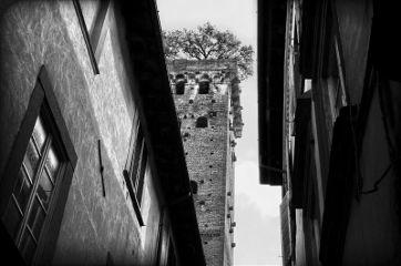 armc1 italy italia lucca architecture