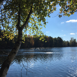 nature fall photography lake