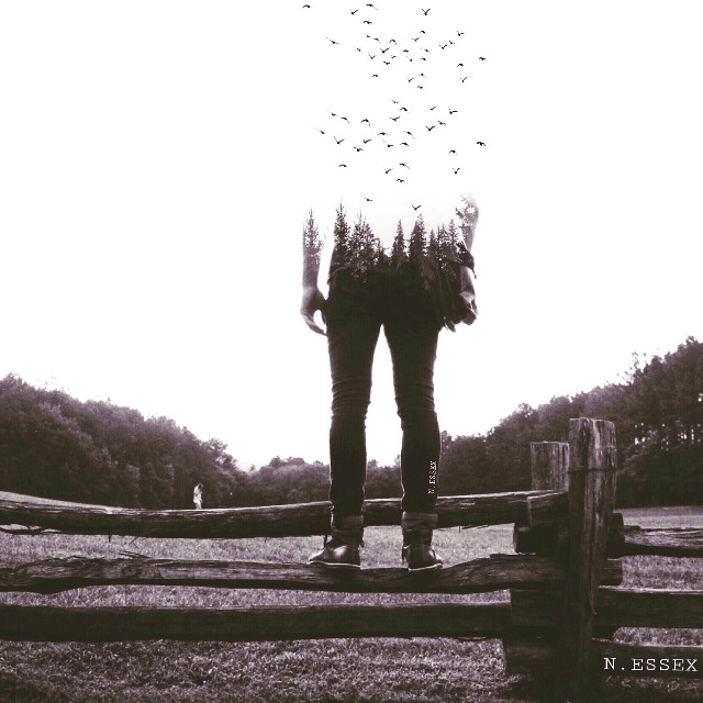 #person #people #portrait #field #view #nature #trees #birds #doubleexposure #surreal #surrealism #blackandwhite