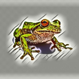 frog colorful nature freetoedit