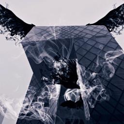 portal afterdark wings shadow smoke FreeToEdit