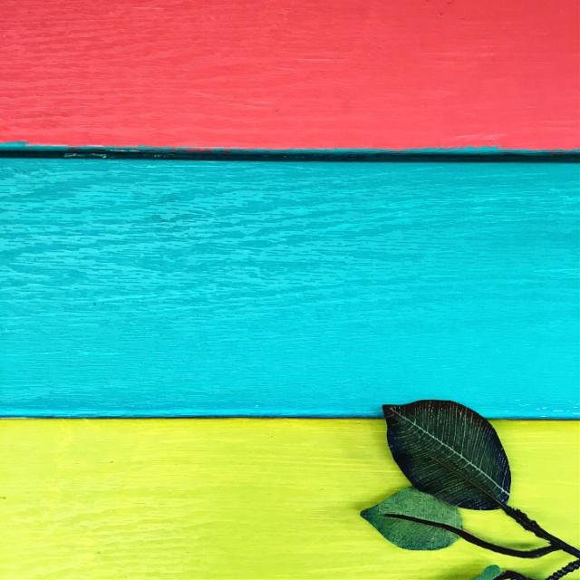 #colorful  #minimal #FreeToEdit