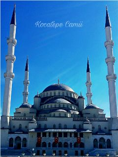 kocatepecamii