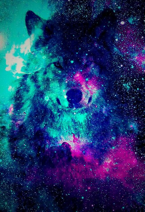 FreeToEdit Galaxy Wolf Hipster Wallpaper Popart