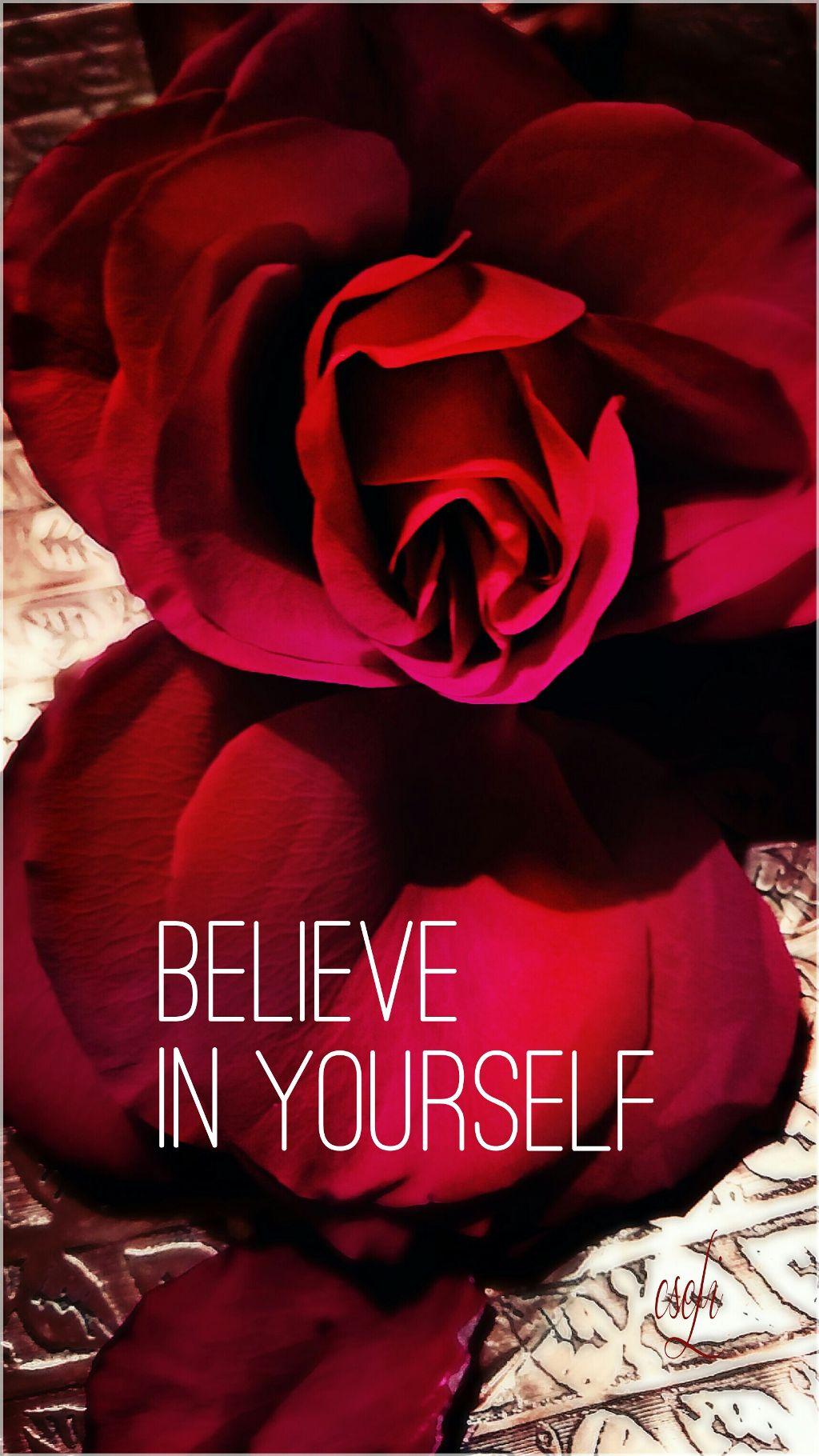 Csefi Rose Quotes Sayings Red Flower