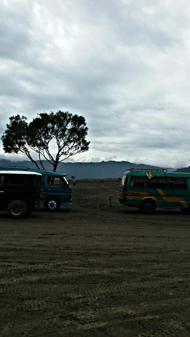 Bus and tree #Bromo #indonesia