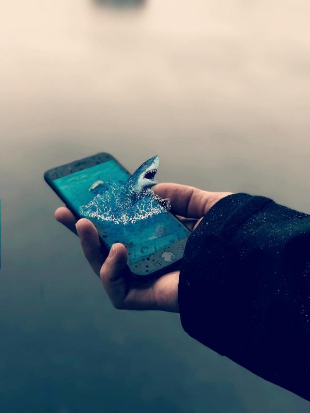 #freetoedit  #shark  #surreal  #smartphone